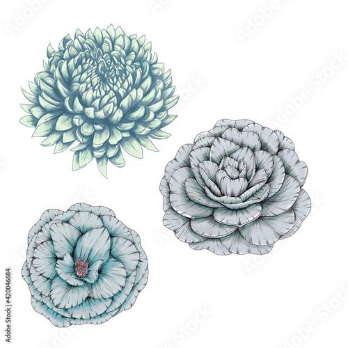 Canvas Light blue flowers, wedding stationery elements, invitation design elements, moo
