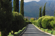 Africa- A Drive Through The Wineries Of South Africa