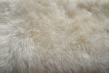 White Sheepskin Texture With Soft Hairs, Natural Fur For The Designer, The Concept Of Processing, Production Of Furrier Products, Stress Relief, Psychological Stress