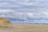 Beautiful rough sea with waves and sandy beach with reeds and dry grass.
