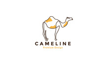 Lines Abstract Colorful Camels Logo Vector Symbol Icon Illustration Design