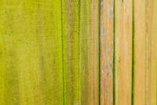 A Wooden Fence Covered In Light Green Algae