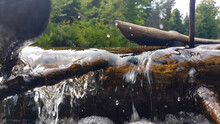Closeup Of Driftwood Bathed By A Creek Creating A Scenic Little Transparent Waterfall.