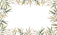 Horizontal Banner Border Of Black And Green Olives On White Background. Design For Olive Oil, Natural Cosmetics, Health Care Products.