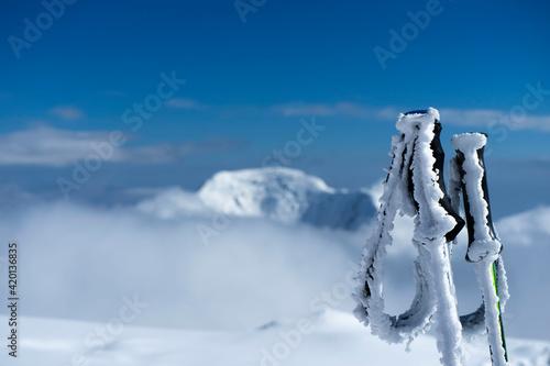 Obraz na plátně The silent majesty of the mountains