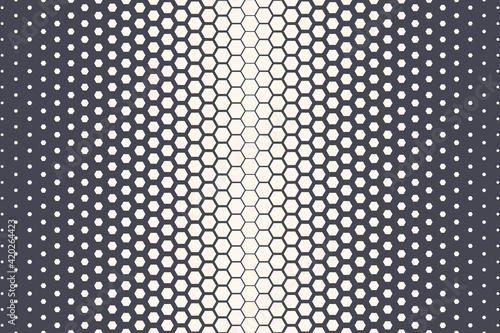 Fotografiet Hexagonal Halftone Texture Vector Geometric Technology Abstract Background