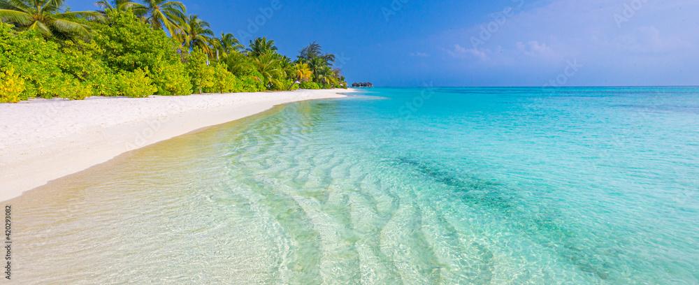 Fototapeta Tranquil beach scene. Sunny exotic tropical beach landscape. Design of summer vacation holiday concept. Luxury travel destination, idyllic nature scenery with palm tree, ocean sea horizon. Inspire