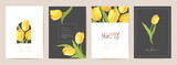Fototapeta Tulipany - Happy Mother day floral postcard. Spring bouquet vector illustration. Greeting realistic tulip flowers template