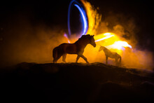 Beautiful Horse Running In Desert At Night. Silhouette Of A Horse Miniature Standing At Foggy Night. Creative Table Decoration With Colorful Backlight With Fog. Selective Focus