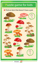 Find A Item That Does Not Have A Pair. Puzzle For Kids. Matching Game, Education Game For Children. Color Set Of Mushrooms. Fly Agaric, Chanterelles, Honey Agaric.