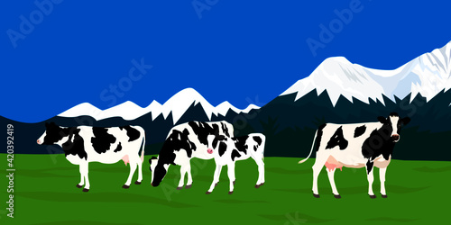 Photo cows in mountains background