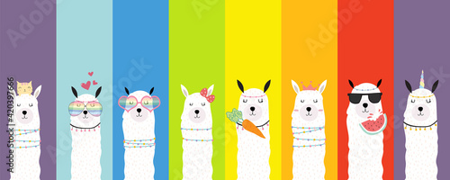 Fototapeta premium Collection of animal background set with llama,rainbow color.Editable vector illustration for birthday invitation,postcard and sticker