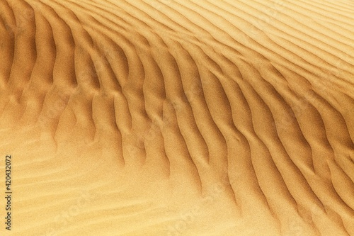 desert sand dune, sand waves Poster Mural XXL