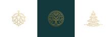 Vector Line Elegant Decoration Design Elements Set - Tree And Hop Illustrations Minimal Linear Style