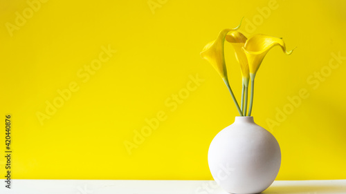 Fototapeta Yellow wall with lily flower, copy space for text. Still life and Lifestyle Concept obraz