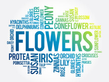 Flowers Word Cloud Collage, Concept Background