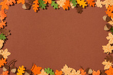 Frame Of Yellow Maple Leaves, Red Oak Leaves, Pear And Acorns