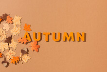 Autumn Colorful Leaves On A Yellow Background With Autumn Text.