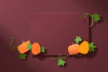 Many Colorful Pumpkins Frame Isolated On Color Background, Autumn Harvest, Halloween Or Thanksgiving Concept