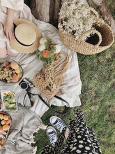 Retro Picnic With Fruits And Flowers