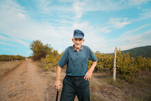 Portrait Of A Senior Man In A Vineyard