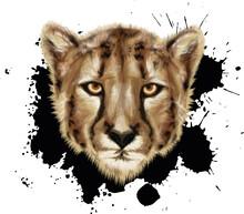 Chester PORTRAIT Big Cat - VECTOR ART