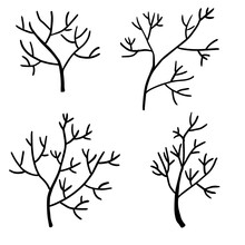 Set Of Doodle Tree Branches. Plants Isolated On White Background. Floral Elements Collection.