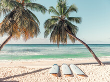 Surfboards On A Beach In Barbados, Caribbean