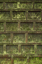 Green Moss On A Stone Wall