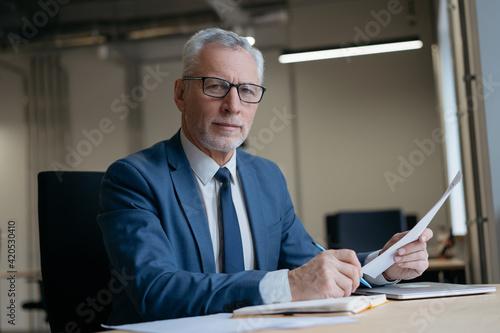Obraz na plátne Handsome businessman holding paper documents working in modern office
