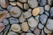 Round River Stones