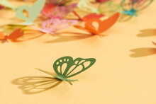Paper Colorful Butterflies