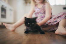 Cute Black Kitty On The Floor Escaping From A Kid