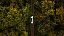 Overhead View Of A White Car Driving Through Forest Road