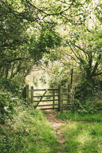 Country Gate.
