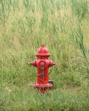 Red Fire Hydrant Outside In Green Nature Grass