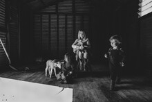 Three Kids In A Barn With Two Lambs