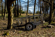 The Old Cald, Abandoned In The Wood