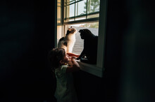 Little Girl Playing With Cats In The Window.