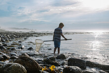 Summer Vacation At The Tide Pool