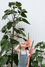 Toddler With Sunglasses In Front Of Flower Garden With Sunflowers And Gladiolus