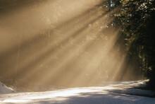 Brilliant Rays Of Sun