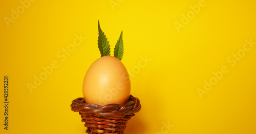 Obraz Bunny made of Cannabis leaves. Easter egg. Yellow background.   - fototapety do salonu