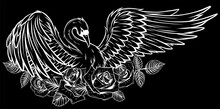 Portrait Of A Swan With Spread Wings With Banner And Red Roses. Silhouette In Black Background