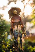 Scarecrow Raven In A Garden