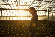 Young Farmer Inside The Glass House