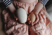 Chicken And Goose Egg