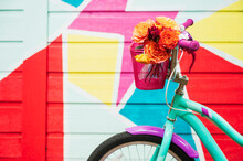 Colorful Bouquet In Bike Basket By Colorful Wall