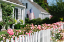 Summer Roses On White Picket Fence In New England