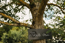 Sign 'mais Oui' Hanging In A Tree